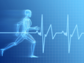 FitnesScience of Long Island - Fitness Assessment with Postural and Movement Analysis